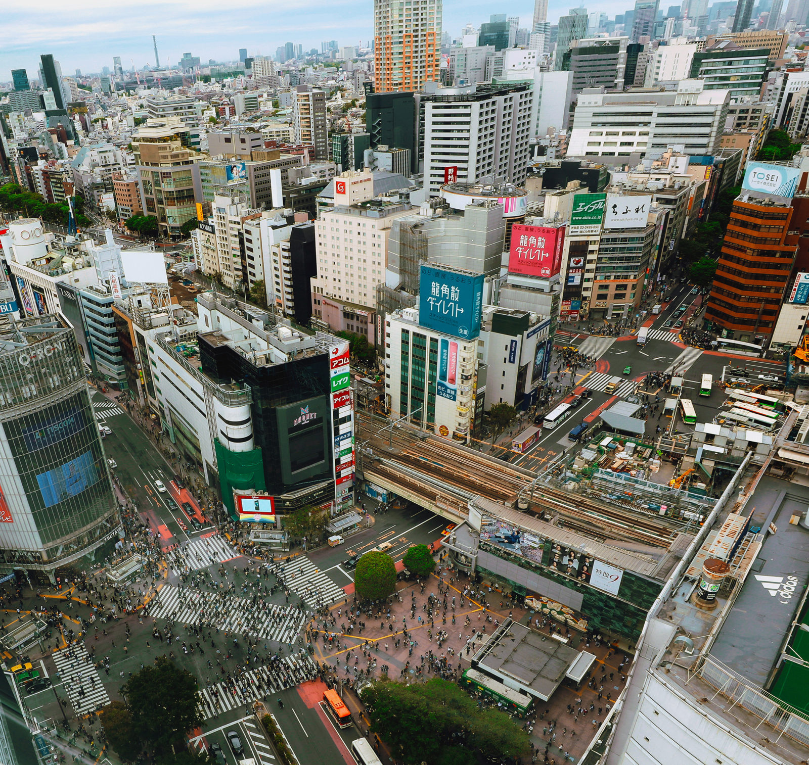 Graphic design and Web, Photography, Branding, Motion Graphics and Video (Shibuya, Tokyo - aerial photo)